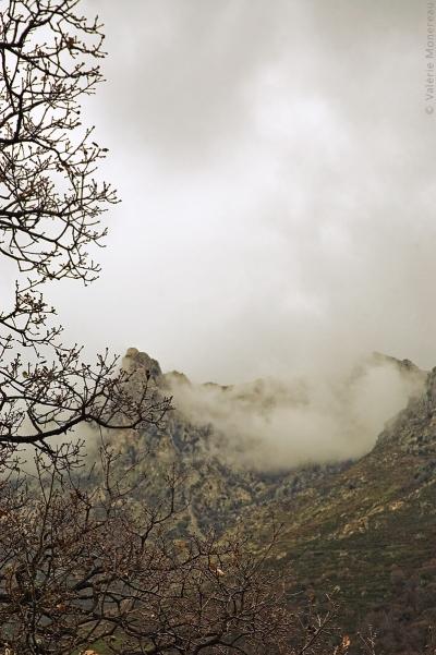 valerie monereau,brume,montagne,corse